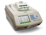 C1000 Thermal Cycler (Bio-Rad)